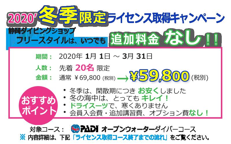 【冬季キャンペーン】静岡市ダイビング・フリースタイル追加料金なし人数限定