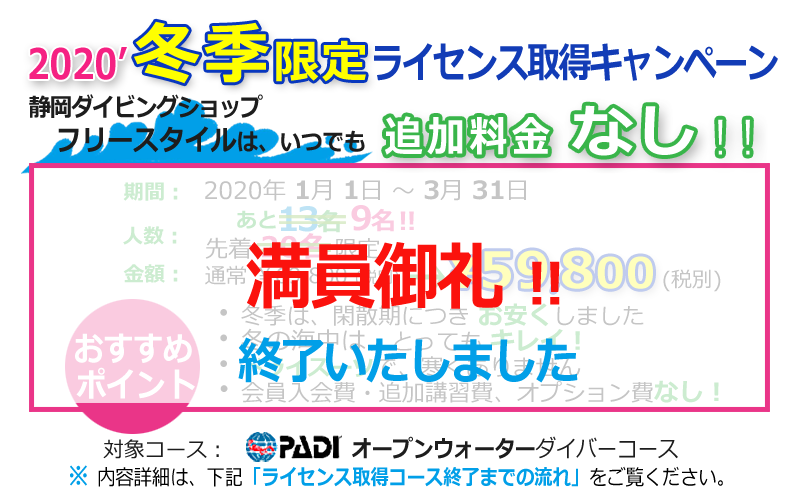 【満員御礼キャンペーン】静岡市ダイビング・フリースタイル追加料金なし人数限定