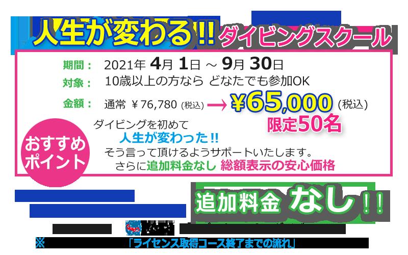 【人生観が変わる!ダイビングスクール】静岡市ダイビング・フリースタイル追加料金なし人数限定