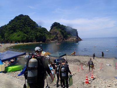 浮島&富戸 ダイビングツアー報告 静岡市のダイビングショップフリースタイルです。