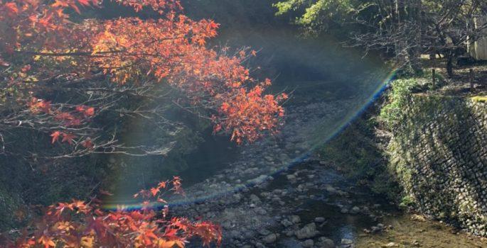 休日なにしてますか? 静岡市のダイビングショップフリースタイルです。