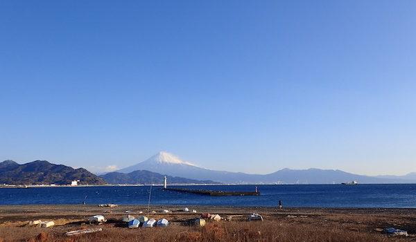 三保ダイビング報告 静岡市のダイビングショップフリースタイルです。