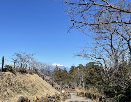 楽しむあなたの力になりたい! 静岡市のダイビングショップフリースタイルです。