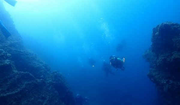 新ポイント、海底温泉⁉ 静岡市のダイビングショップフリースタイルです。