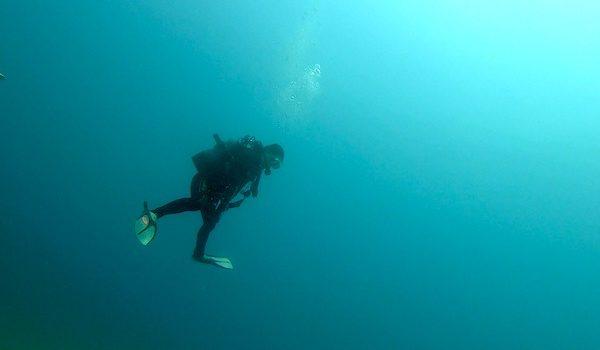 連休折り返し 伊豆半島のコンディションは・・・ 静岡市のダイビングショップフリースタイルです。