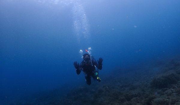 浮島ビーチで海洋講習 静岡市のダイビングショップフリースタイルです。